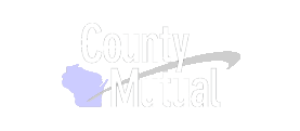Wisconsin County Mutual Insurance Corporation